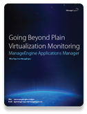Going Beyond Plain Virtualization Monitoring